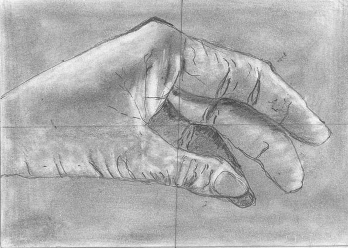 Sarolta rajza